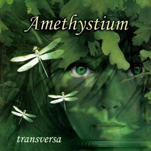 دانلود آهنگ جدید دانلود فول آلبوم آمتیستیوم (Amethystium) بیکلام