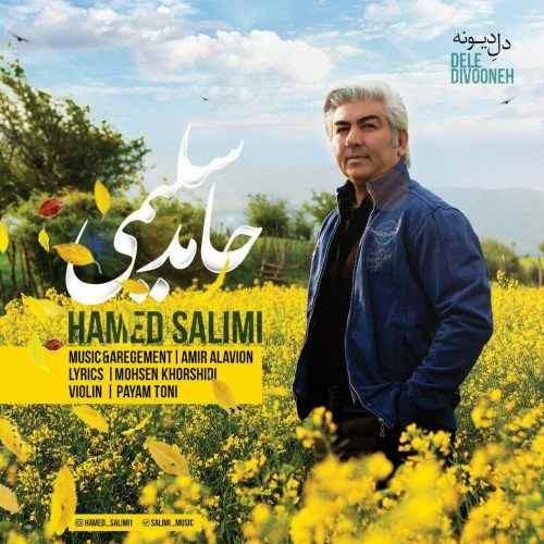 آونگ موزیک دانلود آهنگ جدید حامد سلیمی بنام دل دیوونه