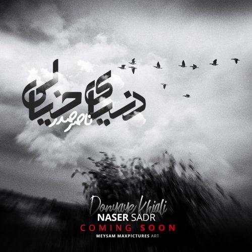 Naser Sadr Donyaye Khiali 2 500x500 - دانلود آهنگ جدید ناصر صدر بنام دنیای خیالی