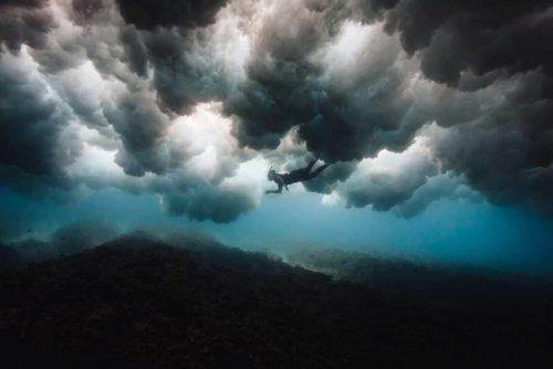 6fd8354b acd8 4e93 9f02 2ea452f62e2a 500x334 - عکسهایی دیدنی از دنیای زیر امواج خروشان دریا به روایت مت پورتوس