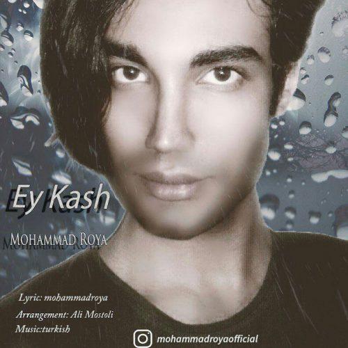"Mohammad Roya Ey Kash 500x500 - دانلود آهنگ جدید ""محمد رویا بنام ای کاش"