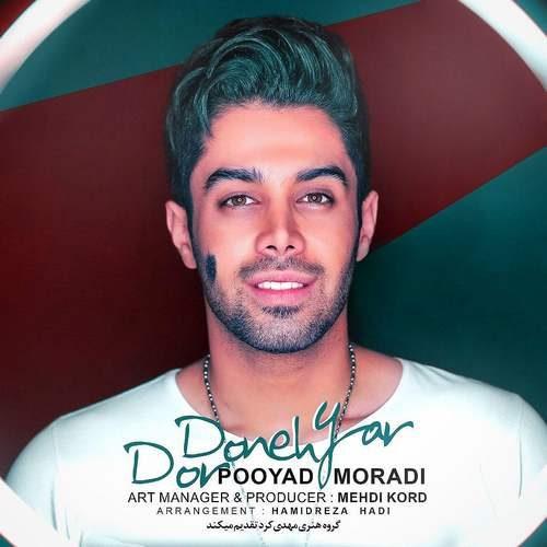 Pooyad Moradi Dordoone 500x500 - دانلود آهنگ جدید پویاد مرادی بنام دردونه