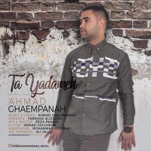 Ahmad Ghaempanah Ta Yadameh 500x500 - دانلود آهنگ جدید احمد قائم پناه بنام تا یادمه