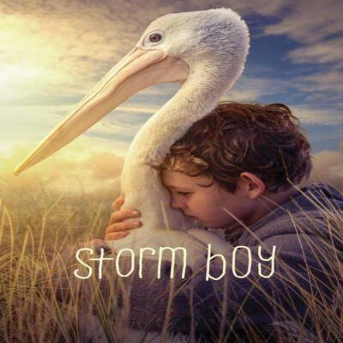 Storm Boy 500x500 - دانلود فیلم پسر طوفان ۲۰۱۹ دوبله فارسی Storm Boy