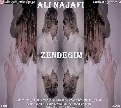 Ali Najafi Zendegim 500x450 - دانلود آهنگ جدید علی نجفی بنام زندگیم