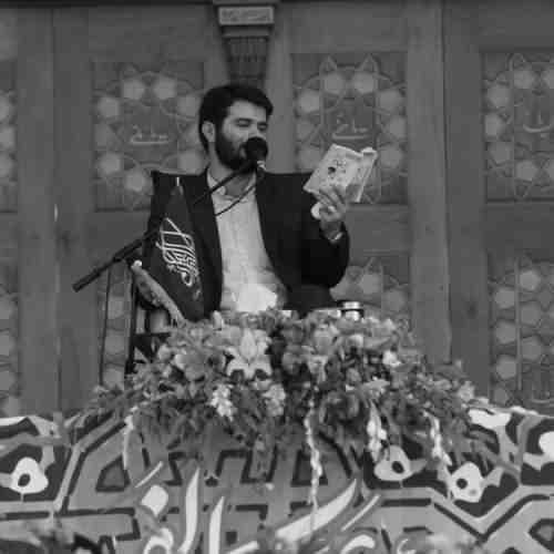 Labaik Ya Hasan Jan - دانلود نوحه جدید میثم مطیعی بنام لبیک یا حسن جان