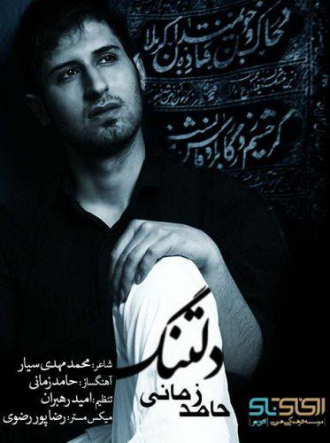 Hamed Zamani Deltang 373x500 - دانلود آهنگ قدیمی حامد زمانی بنام دلتنگ