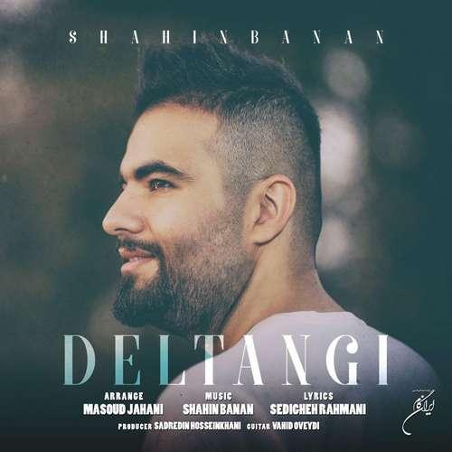 دانلود آهنگ جدید شاهین بهمن بنام دلتنگی