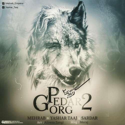 دانلود آهنگ جدید مهراب بنام گرگ پدر ۲