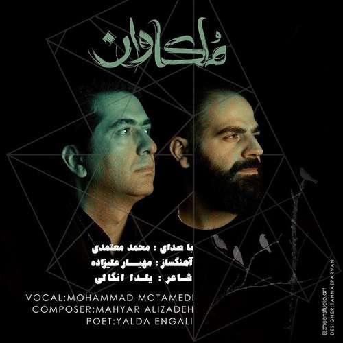 دانلود آهنگ جدید محمد معتمدی بنام ملکاوان