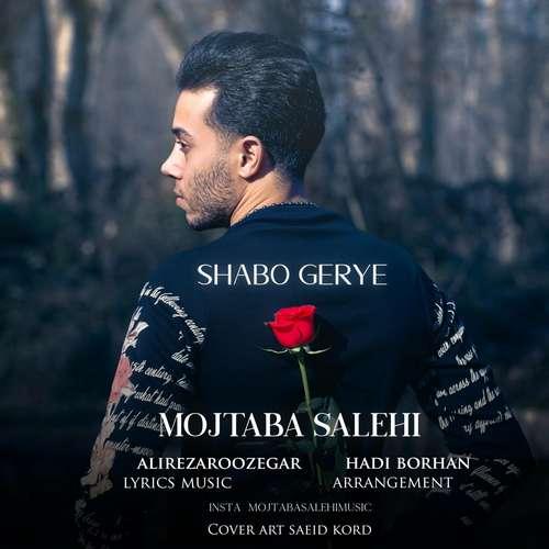 mojtaba salehi shabo gerye - دانلود آهنگ جدید مجتبی صالحی بنام شب و گریه
