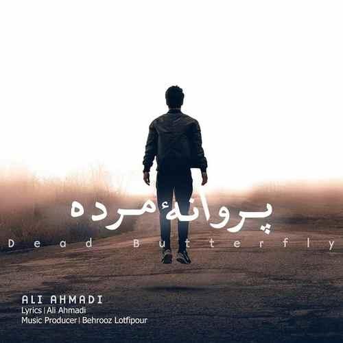دانلود آهنگ جدید علی احمدی به نام پروانه ی مرده