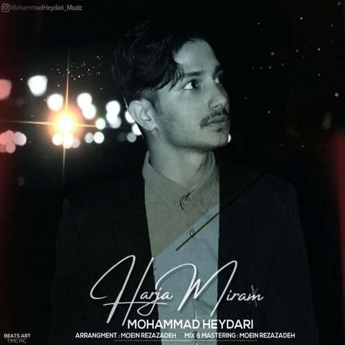 دانلود آهنگ جدید محمد حیدری به نام هرجا میرم