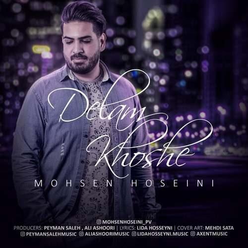 دانلود آهنگ جدید محسن حسینی به نام دلم خوشه