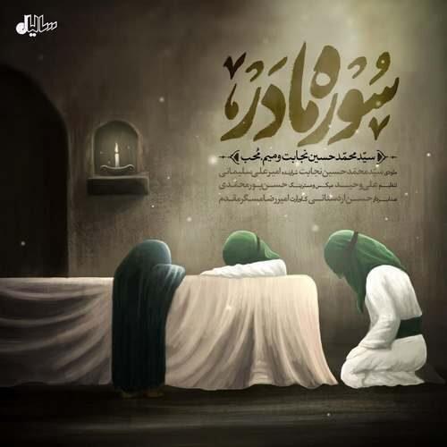 دانلود آهنگ جدید سید محمدحسین نجابت و میم محب به نام سوره مادر