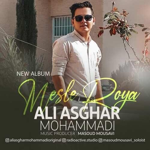 دانلود آلبوم جدید علی اصغر محمدی به نام مثل رویا