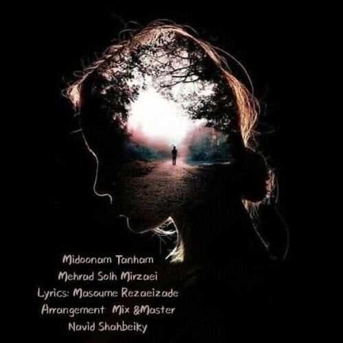 دانلود آهنگ جدید مهراد صلح میرزایی به نام میدونم تنهام