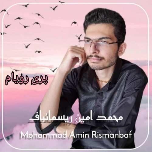 دانلود آهنگ جدید محمد امین ریسمانباف به نام پری رویام