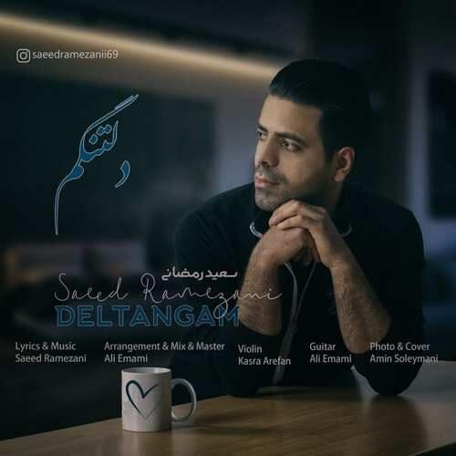دانلود آهنگ جدید سعید رمضانی به نام دلتنگم
