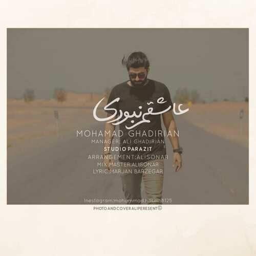 دانلود آهنگ جدید محمد قدیریان به نام عاشقم نبودی