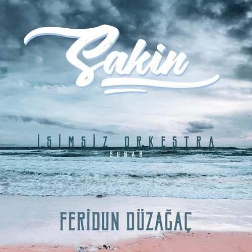 دانلود آلبوم جدید Feridun Düzagaç به نام Sakin