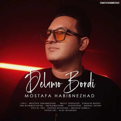 دانلود آهنگ جدید مصطفی حبیب نژاد به نام دلمو بردی