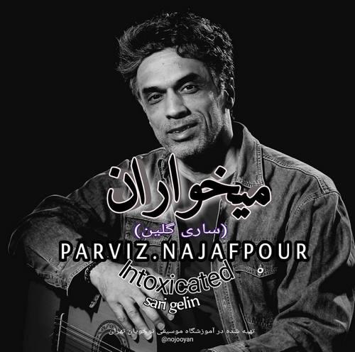 دانلود موزیک ویدیو جدید پرویز نجف پور به نام میخواران
