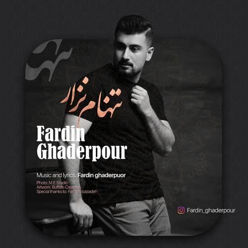 دانلود آهنگ جدید فردین قادرپور به نام تنهام نذار